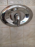 185. Moen Shower Faucet Installed with Remodel Plate